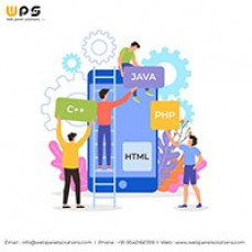Mobile App Development Company in Ncr – Web Panel Solutions