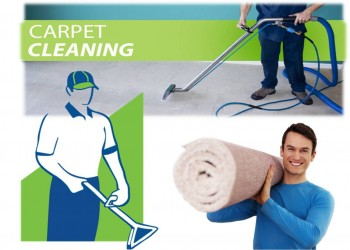 Carpet Stain Treatment Services in Melbourne: