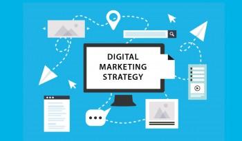 Creative 813 - Digital Marketing Agency