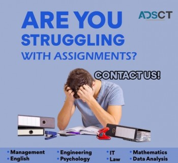 Acemyhomework will help you with your College Assignments.