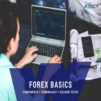 Get The Best forex trading course at The Wealth Builders